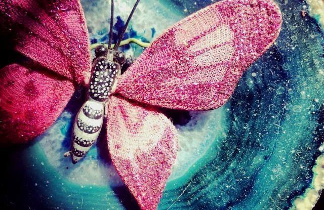 Kelebekler Kaç Gün Yaşar